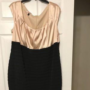 Dresses & Skirts - Champagne & Black dress